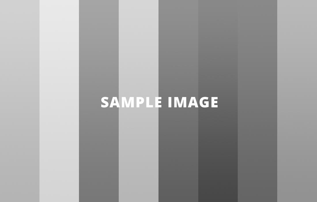 sample-image-1100x700